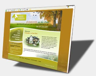 Condominium and Real estate web design